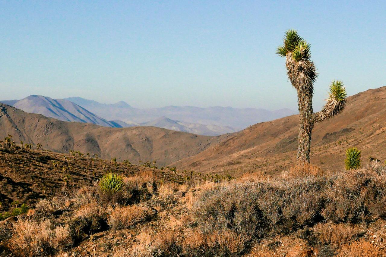 Výsledek obrázku pro Death Valley, USA