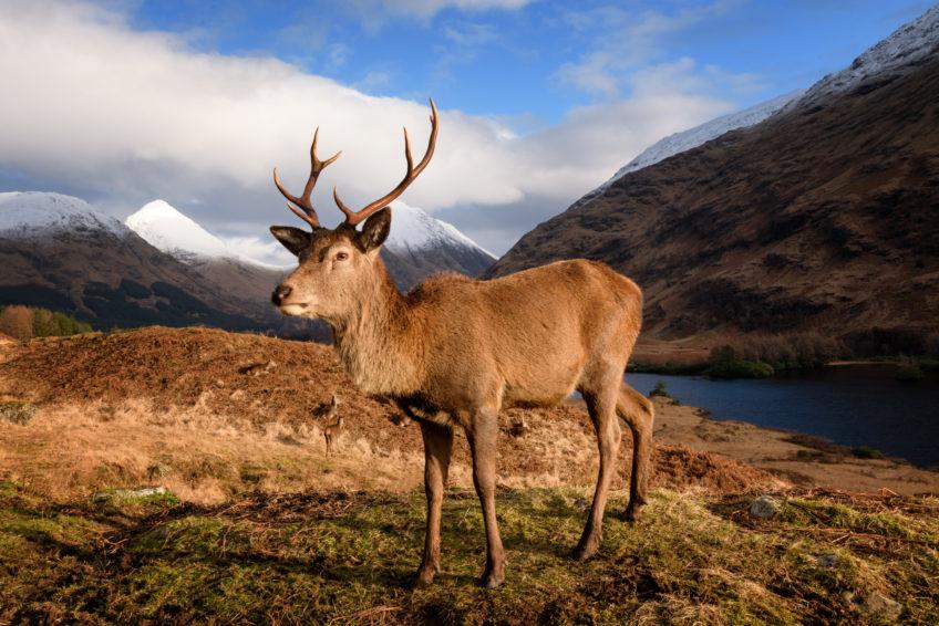 Škótsko, 1.časť