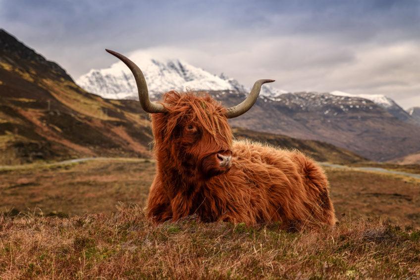Škótsko, 2.časť